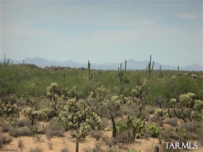 13455 N Old Ranch House Road #9, Marana, AZ 85658 (#21918659) :: Luxury Group - Realty Executives Tucson Elite