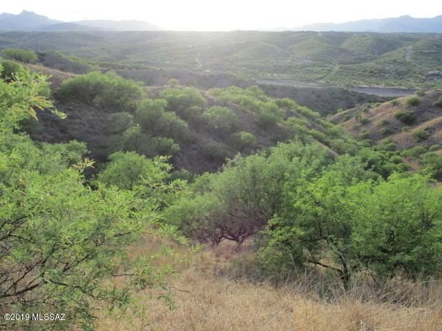 1123 Circulo Montosa #67, Rio Rico, AZ 85648 (#21918851) :: Keller Williams