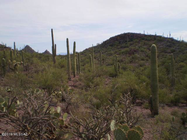 5655 S Catclaw Avenue, Tucson, AZ 85746 (MLS #21923959) :: The Property Partners at eXp Realty