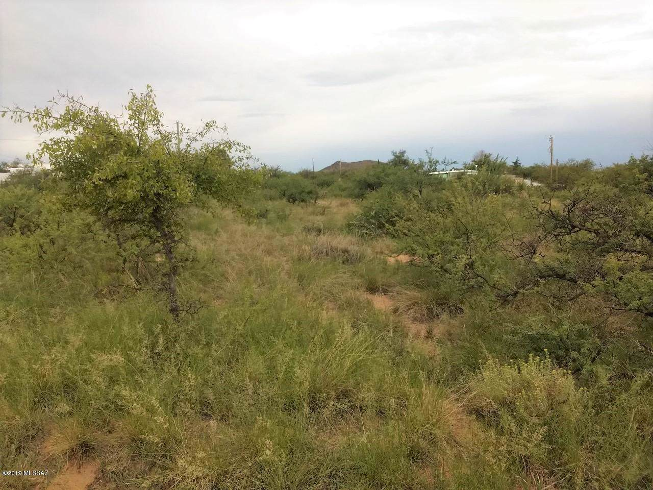 16520 Hohokam Trail - Photo 1