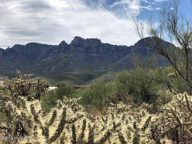 11480 N Flying Bird Drive #25, Oro Valley, AZ 85737 (#21924666) :: Long Realty Company