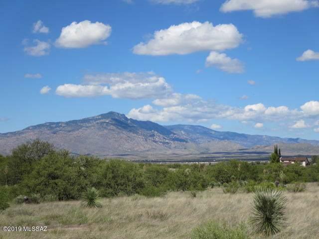 19.39 ac S Shortino Lane, Benson, AZ 85602 (MLS #21926060) :: The Property Partners at eXp Realty