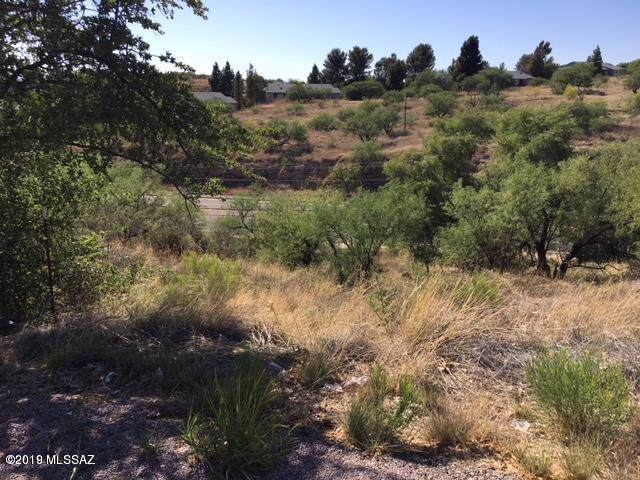 Lot 28 Calle Esplendor #28, Nogales, AZ 85621 (MLS #21927595) :: The Property Partners at eXp Realty