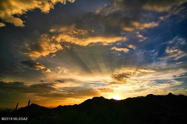 14388 N Como Drive, Tucson, AZ 85755 (#21928733) :: Long Realty Company