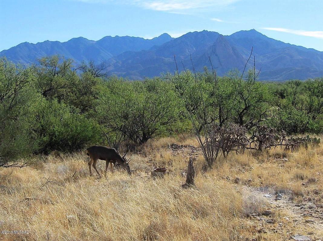 27425 Old Mesquite Way - Photo 1