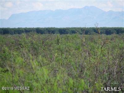 63.27 Acre W Soaptree Road, Bowie, AZ 85605 (#21930461) :: Long Realty Company