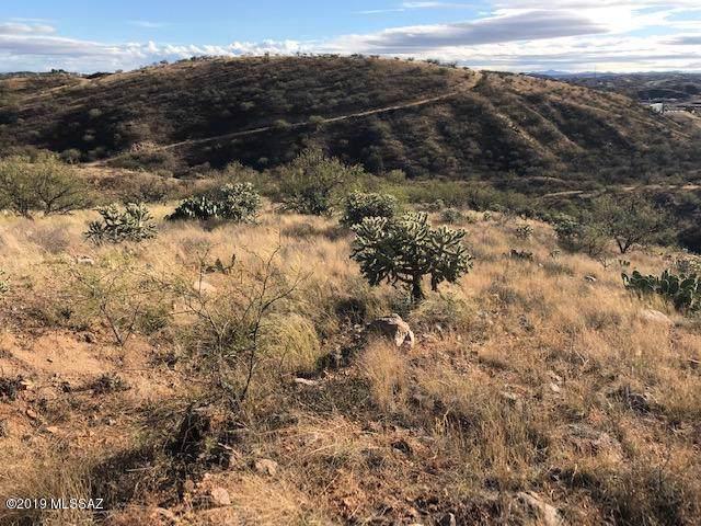 E Camino Vista Del Cielo, Nogales, AZ 85621 (#21931147) :: Keller Williams