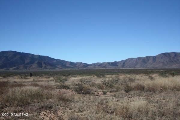 W Eeyore Lane #0, Benson, AZ 85602 (#21931873) :: Tucson Property Executives