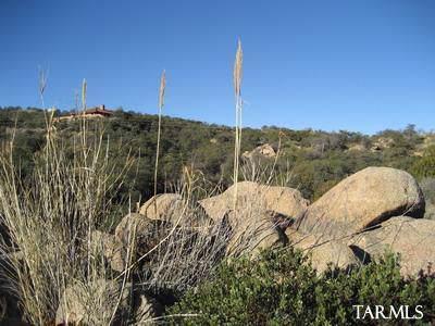 0 S Coronado Ridge Road 3.31 Ac, Oracle, AZ 85623 (#21932203) :: Long Realty - The Vallee Gold Team