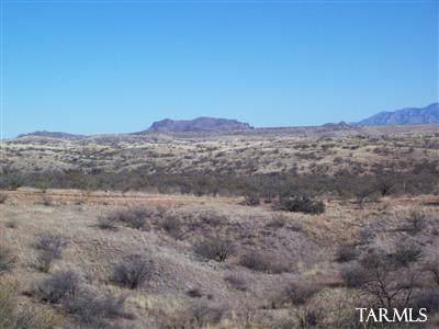 13200 W Hardscrabble Road 222-S2, Arivaca, AZ 85601 (#22000759) :: The Local Real Estate Group | Realty Executives