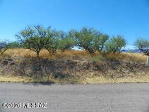 594 Camino Kansas #31, Rio Rico, AZ 85648 (#22002629) :: Long Realty Company