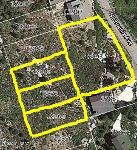 12897 N Phoenix Avenue #8, Mt. Lemmon, AZ 85619 (#22003364) :: The Local Real Estate Group | Realty Executives