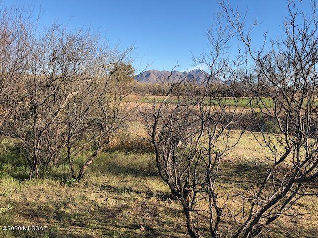 TBD Zorro Court #14, Tubac, AZ 85646 (#22004732) :: Long Realty - The Vallee Gold Team