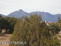 30 W. Park #76, Sonoita, AZ 85637 (MLS #22004982) :: The Property Partners at eXp Realty