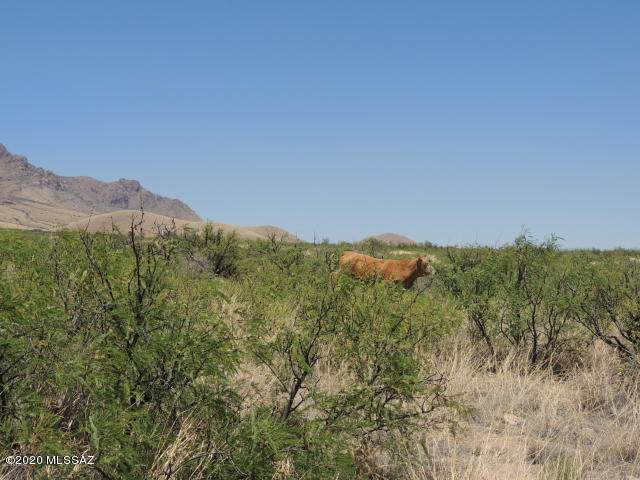 36.96ac E Blacktail Trail, Portal, AZ 85632 (#22004995) :: Long Realty - The Vallee Gold Team