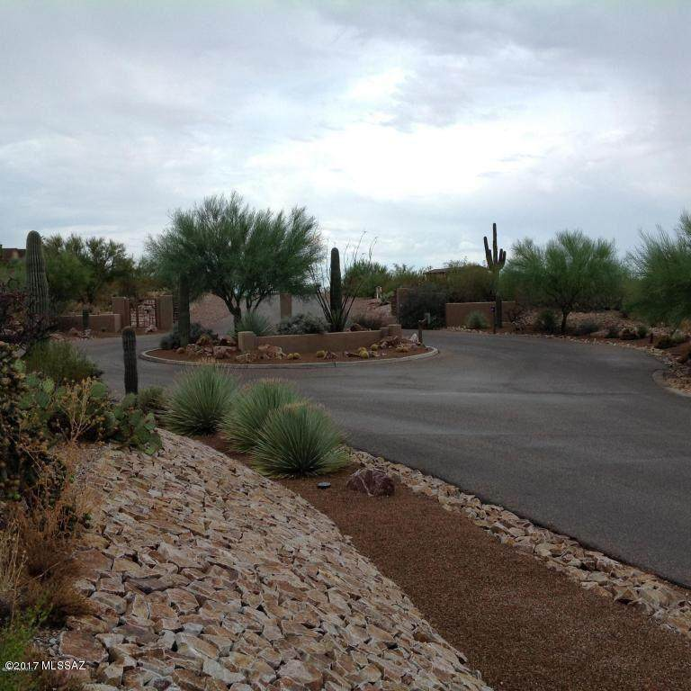 3898 Saguaro Monument Place - Photo 1