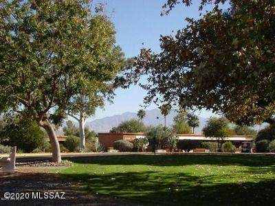 357 Paseo Tierra - Photo 1