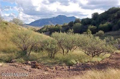 516 Threeawn Lane #37, Patagonia, AZ 85624 (#22009922) :: Long Realty - The Vallee Gold Team