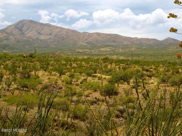 19287 S Sonoita Highway, Vail, AZ 85641 (MLS #22012686) :: The Property Partners at eXp Realty