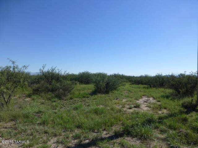 5 acres N Cottontail (West 5 Acres) Lane #0, Cochise, AZ 85606 (#22013118) :: AZ Power Team | RE/MAX Results