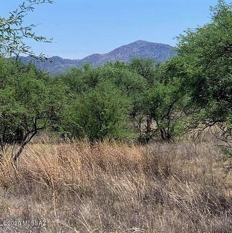 16005 W Ranger Road #171, Arivaca, AZ 85601 (MLS #22019033) :: The Property Partners at eXp Realty