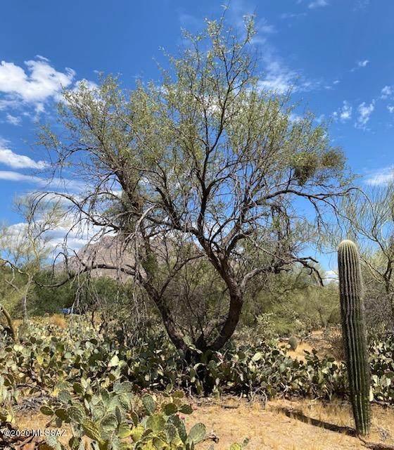 8850 N Camino Coronado #13, Tucson, AZ 85704 (#22019806) :: The Local Real Estate Group | Realty Executives