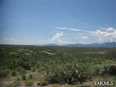 E Vanessa Way 10 Ac., Oracle, AZ 85623 (#22024300) :: Long Realty - The Vallee Gold Team