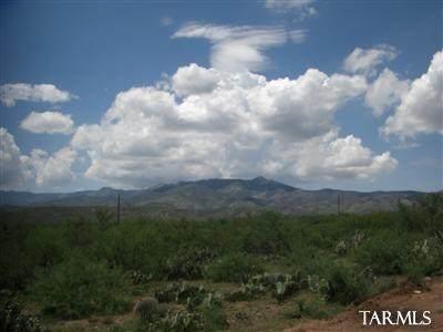 2.5 acres E Vanessa Way A, Oracle, AZ 85623 (#22024610) :: Long Realty Company