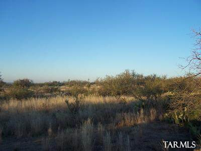0 E Chris Way 1.25 Ac., Oracle, AZ 85623 (MLS #22104364) :: The Property Partners at eXp Realty