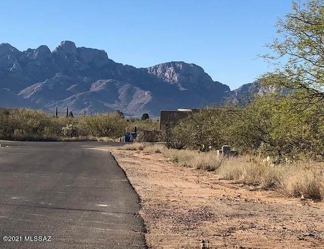 15031 N Gangarebo Place, Tucson, AZ 85739 (#22105061) :: Tucson Property Executives