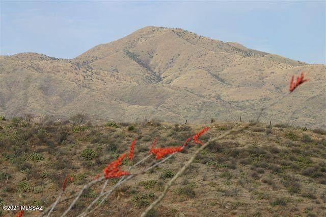 19521 S Sonoita Highway SE, Vail, AZ 85641 (MLS #22105462) :: My Home Group