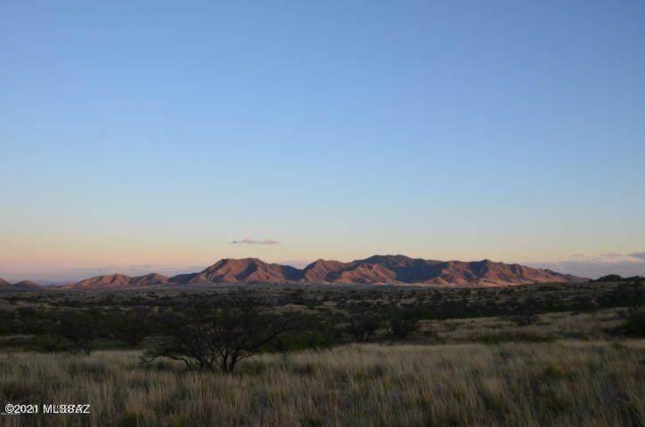 TBD Adams Ranch Road - Photo 1