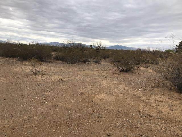 6860 E Noyes Street, Sahuarita, AZ 85629 (#22110136) :: AZ Power Team