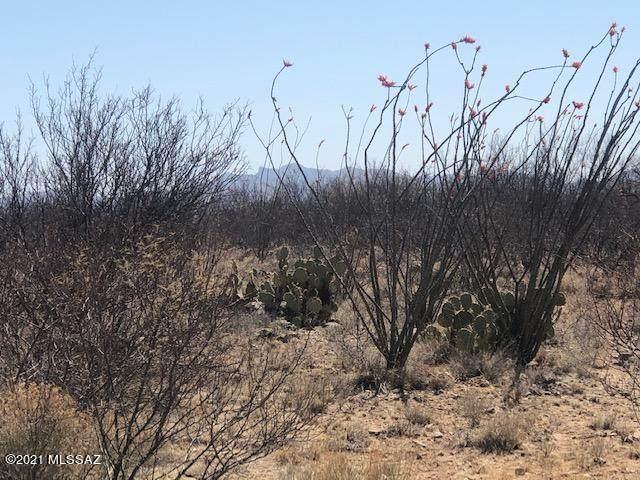 TBD Camino Obregon #68, Tubac, AZ 85646 (#22110465) :: The Josh Berkley Team