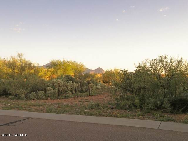 926 E Florida Saddle Drive #264, Green Valley, AZ 85614 (#22110478) :: Long Realty Company
