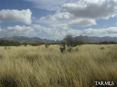35 Jackrabbit Road #35, St. David, AZ 85630 (#22110904) :: Long Realty Company