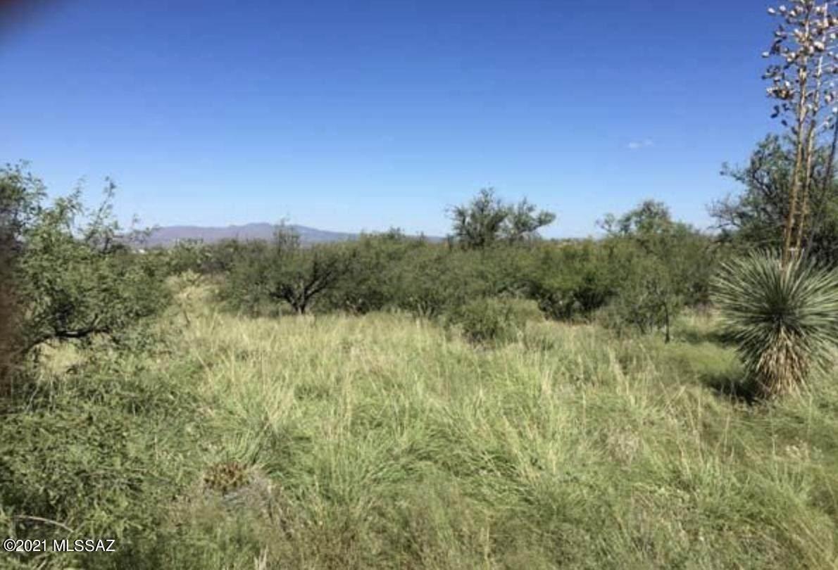 000 Yucca - Photo 1