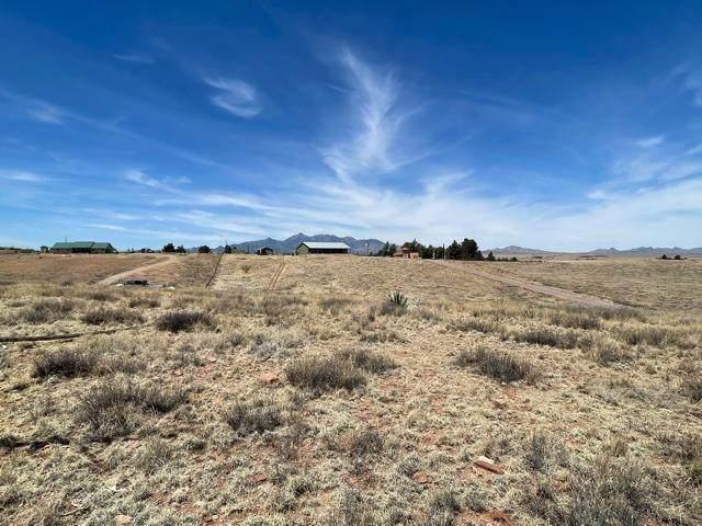 21 Cayuse Trail 138/139, Sonoita, AZ 85637 (#22111278) :: Long Realty Company