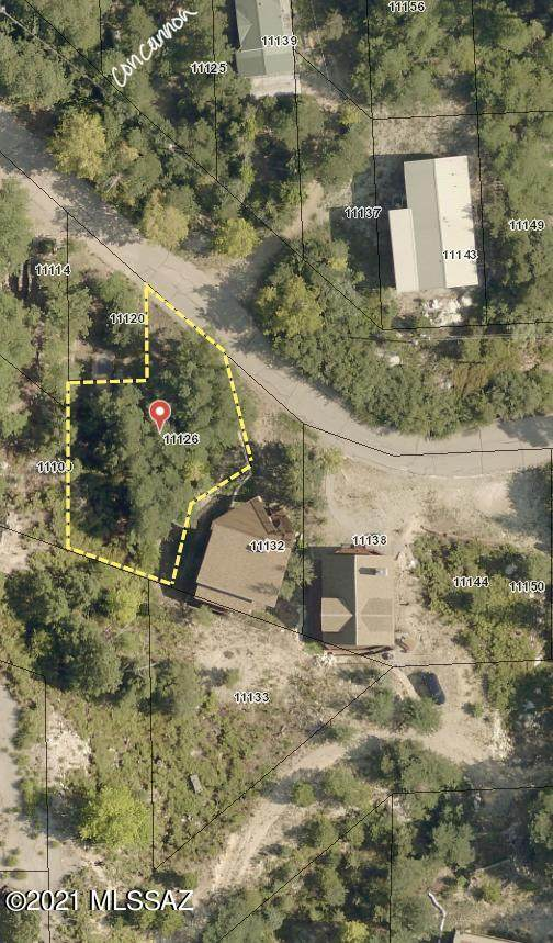 11126 E Carter Canyon Road #1, Mt. Lemmon, AZ 85619 (#22111284) :: Long Realty Company
