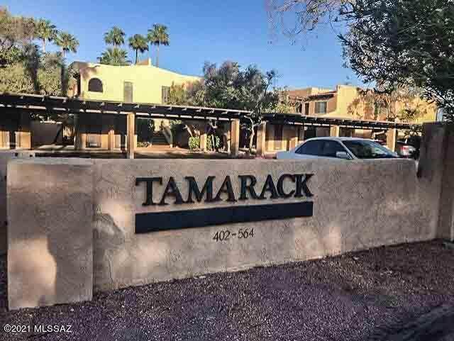 432 N Dodge Boulevard, Tucson, AZ 85716 (#22111752) :: Kino Abrams brokered by Tierra Antigua Realty