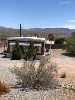 411 S Hetzel Avenue, Mammoth, AZ 85618 (#22111977) :: Long Realty - The Vallee Gold Team
