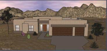 12205 N Carpas Wash Drive, Marana, AZ 85658 (#22115222) :: The Dream Team AZ