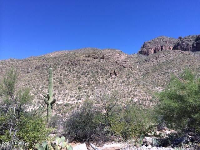7500 N Catalina Ridge Drive #55, Tucson, AZ 85718 (#22115292) :: Long Realty - The Vallee Gold Team