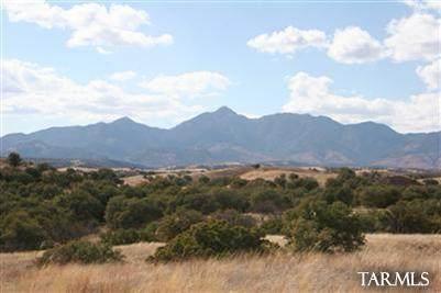 Address Not Published, Sonoita, AZ 85637 (MLS #22115447) :: The Luna Team