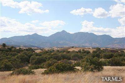 0 Sierra Grande Ranch Road #1, Sonoita, AZ 85637 (MLS #22115450) :: The Property Partners at eXp Realty