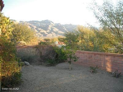 5500 N Via Papavero, Tucson, AZ 85750 (#22116084) :: Kino Abrams brokered by Tierra Antigua Realty