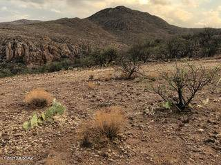 TBD Via Suerte Tbd, Tubac, AZ 85646 (#22116627) :: Kino Abrams brokered by Tierra Antigua Realty