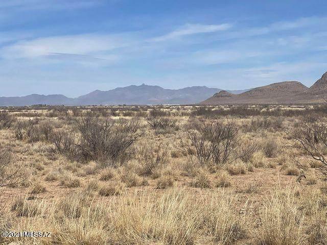 TBD 401-41-493 #573, Elfrida, AZ 85610 (#22119182) :: Luxury Group - Realty Executives Arizona Properties