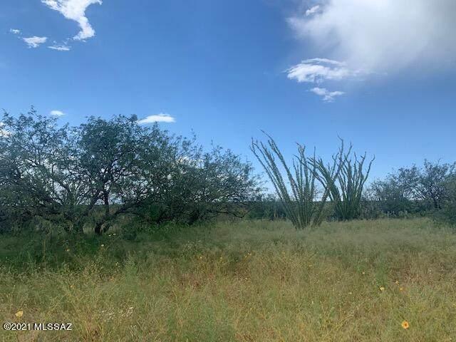 TBD Camino Tango #92, Tubac, AZ 85646 (#22122274) :: Kino Abrams brokered by Tierra Antigua Realty