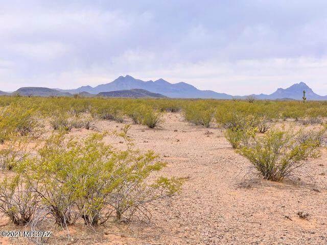 17530 W Whitewing Way, Marana, AZ 85653 (#22122993) :: The Dream Team AZ